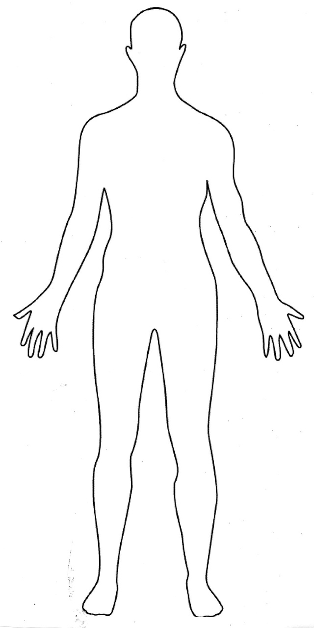 Medical Body Outline Front And Back - FREE DOWNLOAD